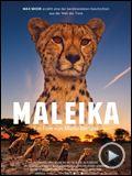 Bilder : Maleika Trailer DF