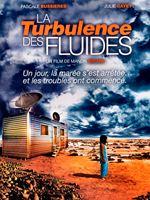 La Turbulence des fluides