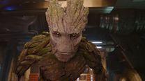 Top 5 - Vorsicht: Baum schlägt aus! (FS-Video)