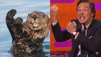 In einer Talkshow: Benedict Cumberbatch posiert als Otter - und verprügelt einen Teddybären