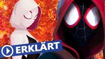 """Was ist das Spider-Verse aus """"Spider-Man: A New Universe""""? (promisesplus.net-Original)"""