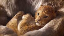 Der König der Löwen Teaser DF