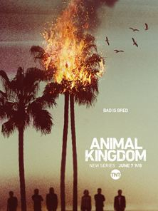 Animal Kingdom - staffel 4 Trailer OV