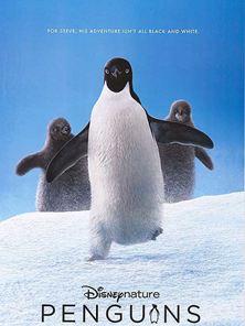 Penguins Trailer OV