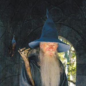 Der Herr der Ringe - Die Rückkehr des Königs : Bild Ian McKellen