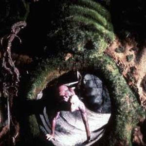 peter greenaway filmographie