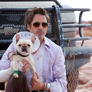 Stichtag : Bild Robert Downey Jr.