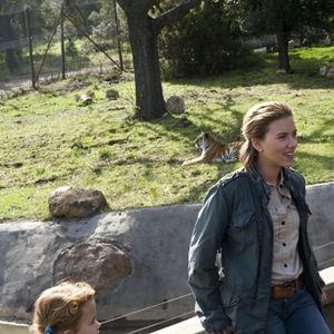 Zoo Besetzung