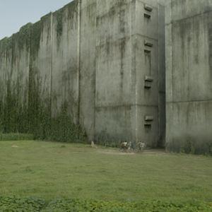 Maze Runner - Die Auserwählten im Labyrinth : Bild