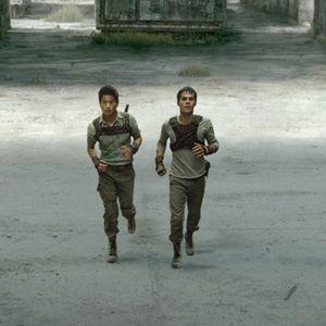 Maze Runner - Die Auserwählten im Labyrinth : Bild Dylan O'Brien, Ki Hong Lee