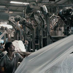 Machines : Bild