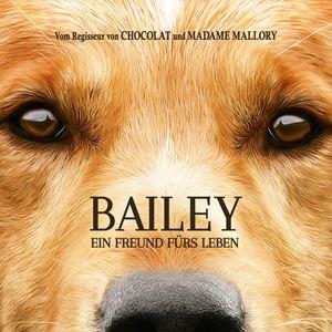 Bailey Ein Freund Fürs Leben 2