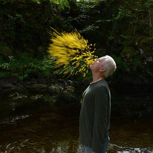 Leaning Into The Wind - Andy Goldsworthy : Bild Andy Goldsworthy