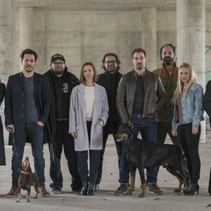Dogs Of Berlin : Bild