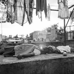 Roma : Bild