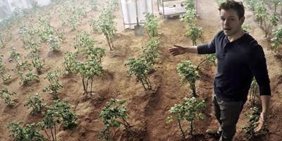 Ohne Frage das geilste Gemüse: Die Top 7 Kartoffelfilme aller Zeiten!