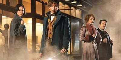 """7 Dinge, die wir schon jetzt über das """"Harry Potter""""-Spin-off """"Phantastische Tierwesen und wo sie zu finden sind"""" wissen"""