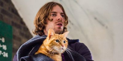 """Katze als Lebensretter: Neuer deutscher Trailer zu """"Bob, der Streuner"""" nach dem gleichnamigen Bestseller"""