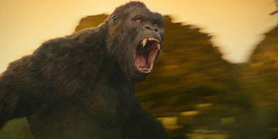 """allourhomes.net am Set von… """"Kong: Skull Island"""""""