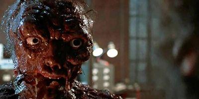"""""""Die Fliege""""-Remake: """"Sleight""""-Regisseur J.D. Dillard soll neuen Insekten-Horror inszenieren"""