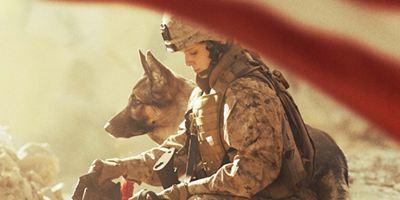 """Erster Trailer zu """"Megan Leavy"""": Kate Mara durchlebt mit einem Hund an ihrer Seite die Schrecken des Irakkrieges"""