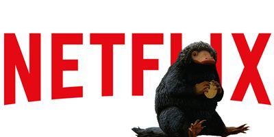 """Wer zu """"Phantastische Tierwesen 2"""" ins Kino geht, sollte vorher Netflix schauen"""