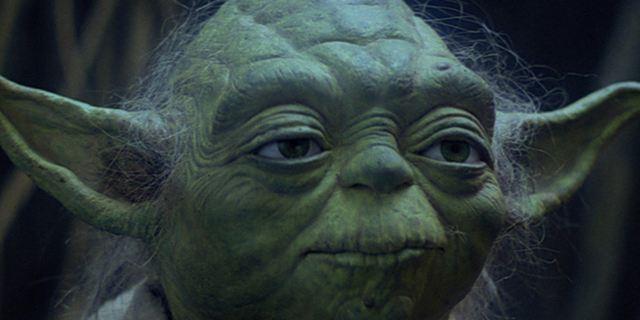 """Erster Hinweis: Fan-Liebling Yoda könnte in """"Star Wars 8"""" zurückkehren"""