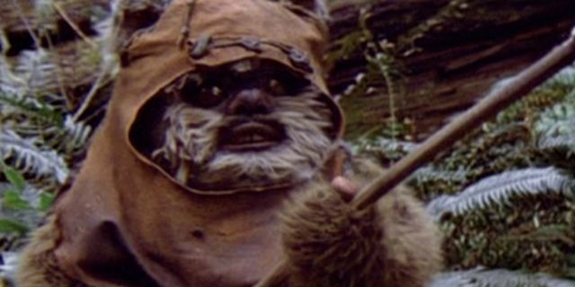 """Die Nachfolger der Ewoks in """"Star Wars 8""""? Details zu neuen, kleinen Kreaturen an der Seite von Luke Skywalker"""