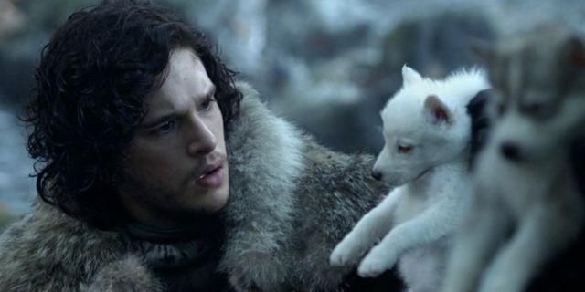 """Da heult der Schattenwolf: """"Game Of Thrones""""-Hundenamen liegen 2017 im Trend"""