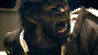 """Sequel zu """"The Wolfman"""" lediglich auf DVD"""