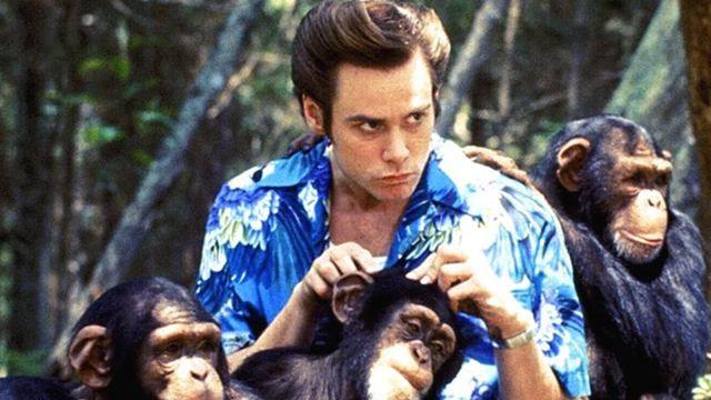 """""""Ace Ventura"""": Reboot zur Kult-Komödie mit Jim Carrey kommt wirklich"""