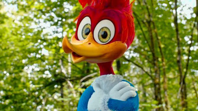 """Erster Trailer zum """"Woody Woodpecker""""-Realfilm: Der freche Specht sorgt für jede Menge Chaos"""