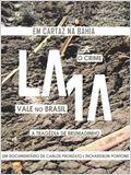LAMA, o crime Vale no Brasil, a tragédia de Brumadinho