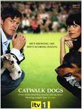 Catwalk Dogs