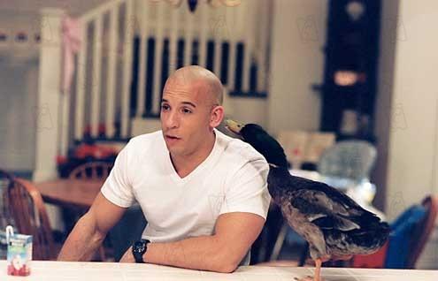 Vin Diesel Fotos Bilder von Vin