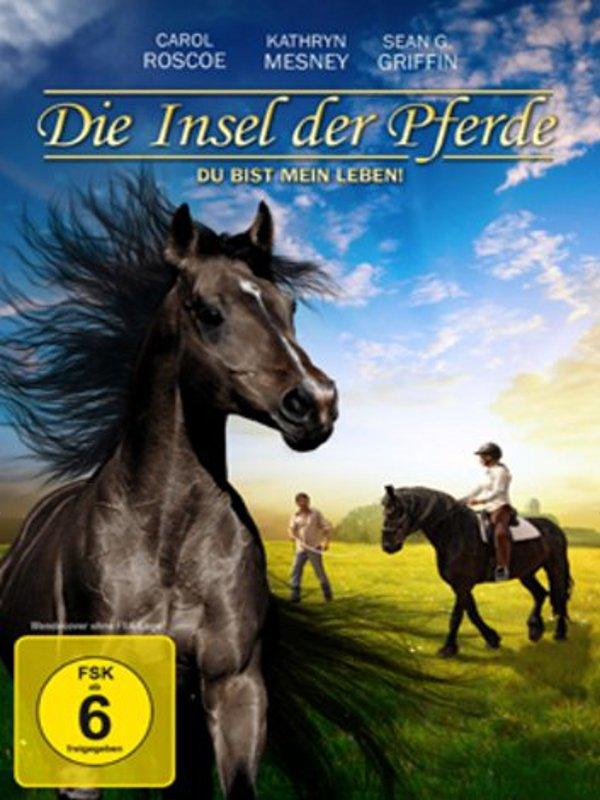 pferde film