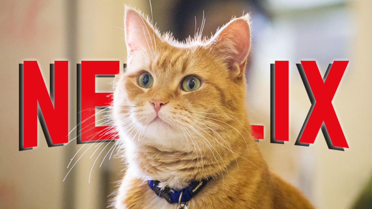 Bond Bösewicht Katze