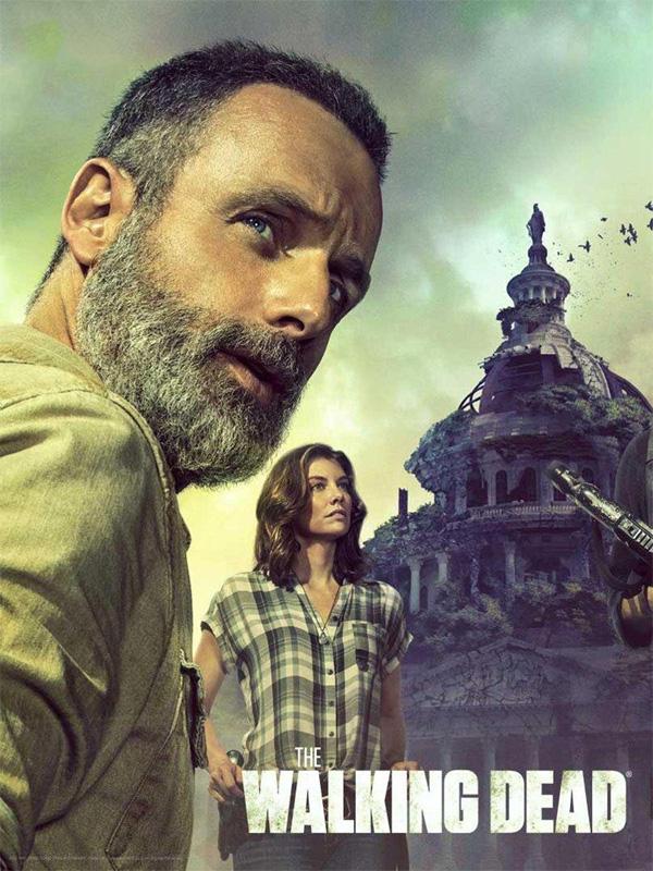 Walking Dead Staffel 9 Dvd