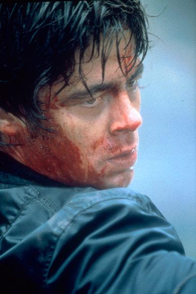 Die Stunde des Jägers : Bild Benicio Del Toro