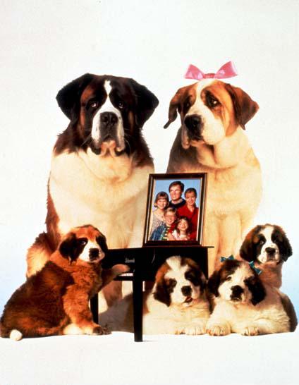 Eine Familie namens Beethoven : Bild Rod Daniel