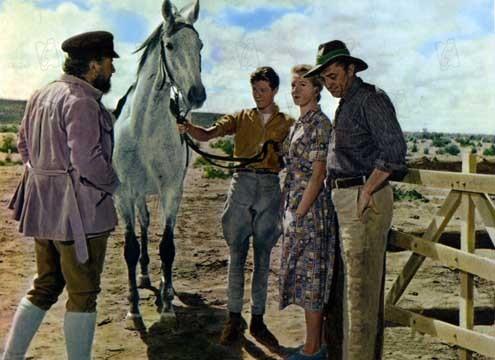Der endlose Horizont : Bild Deborah Kerr, Fred Zinnemann, Michael Anderson Jr., Peter Ustinov, Robert Mitchum