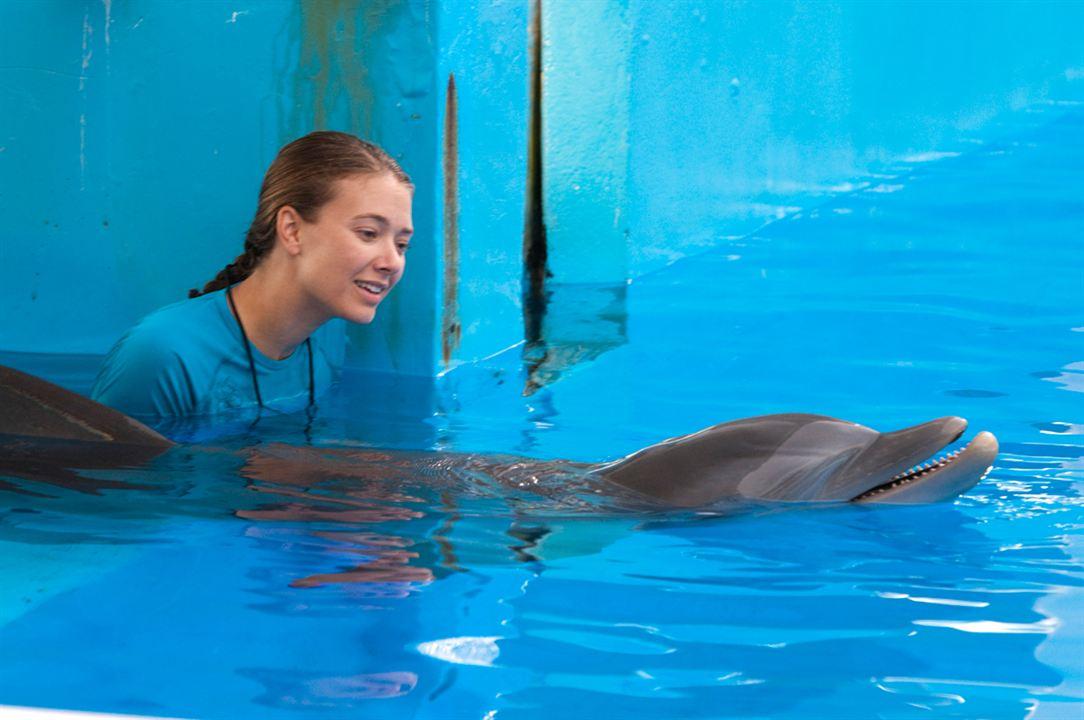 mein freund der delfin 3 trailer