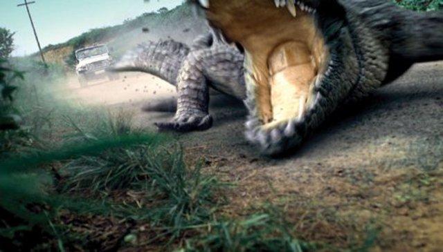 Million Dollar Crocodile - Die Jagd beginnt : Bild