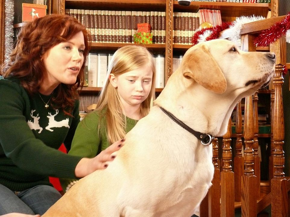 Ein Hund rettet den Weihnachtsurlaub : Bild Elisa Donovan, Sierra McCormick