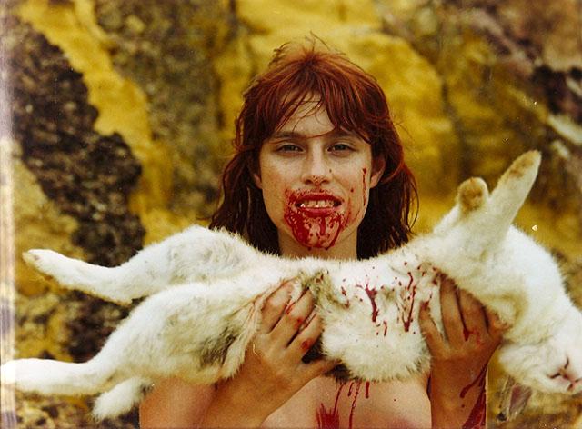 Animal Político : Bild