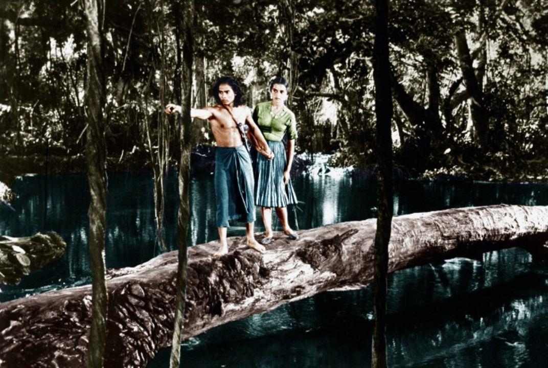 Das Dschungelbuch : Bild Sabu (II)