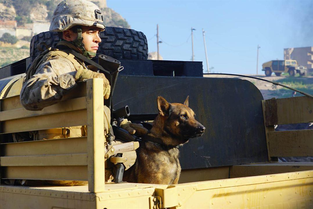Sergeant Rex - Nicht ohne meinen Hund : Bild Ramon Rodríguez