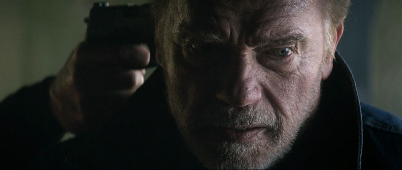 Vendetta - Alles was ihm blieb war Rache : Bild Arnold Schwarzenegger