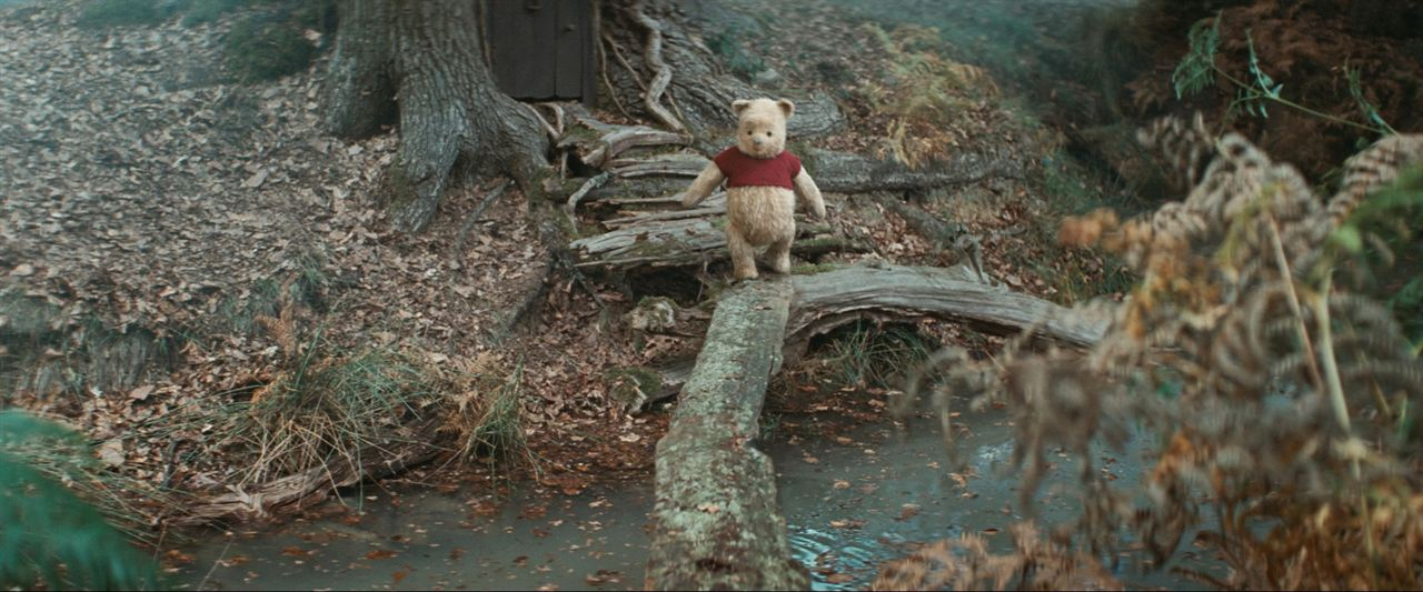 Christopher Robin : Bild