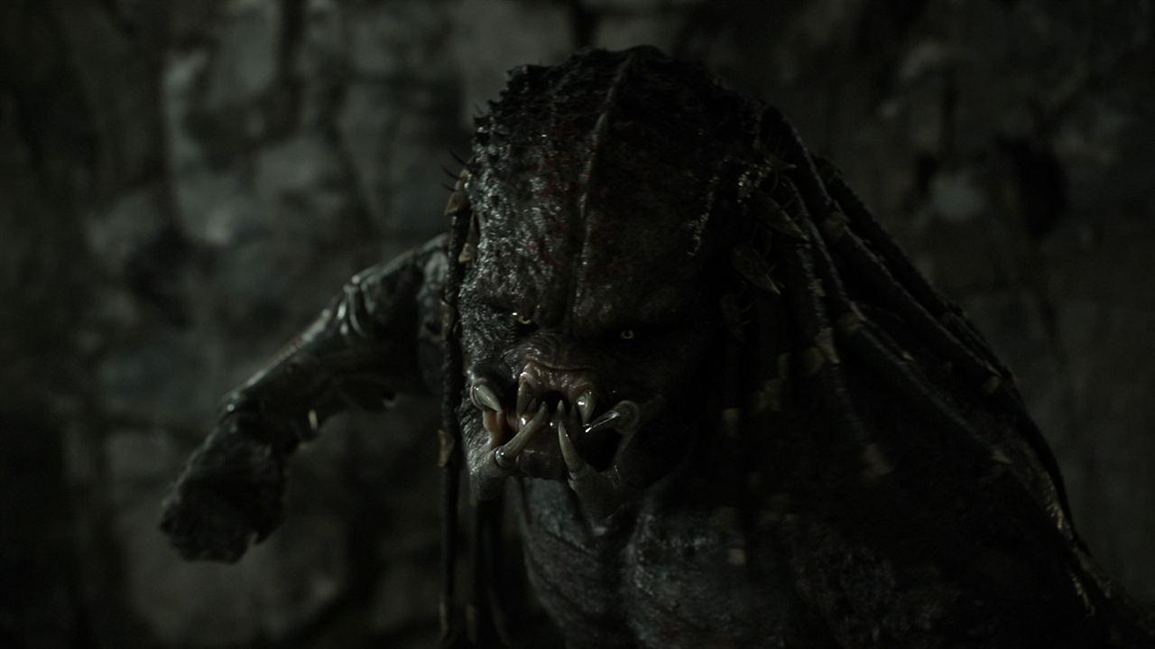 Predator - Upgrade : Bild